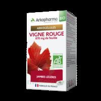 Arkogélules Vigne Rouge Bio Gélules Fl/45 à DIJON