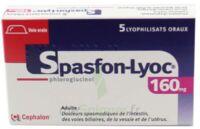 SPASFON LYOC 160 mg, lyophilisat oral à DIJON