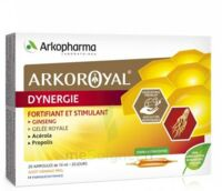 Arkoroyal Dynergie Ginseng Gelée royale Propolis Solution buvable 20 Ampoules/10ml à DIJON