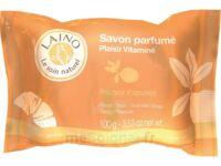 LAINO SAVON PARFUME PLAISIR VITAMINE 100G à DIJON