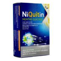 NIQUITIN 4 mg Gom à mâcher médic menthe glaciale sans sucre Plq PVC/PVDC/Alu/30 à DIJON