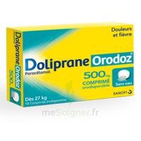 DOLIPRANEORODOZ 500 mg, comprimé orodispersible à DIJON