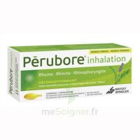 PERUBORE Caps inhalation par vapeur inhalation Plq/15 à DIJON
