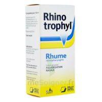 RHINOTROPHYL Solution pour pulvérisation nasale 1Fl/12ml à DIJON