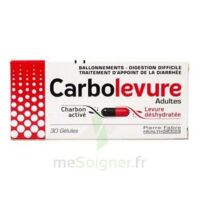 CARBOLEVURE Gélules adulte Plq/30 à DIJON
