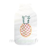 Cooper Bouillotte Silice adulte Ananas à DIJON
