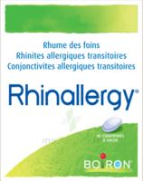 Boiron Rhinallergy Comprimés B/40 à DIJON