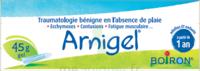 Boiron Arnigel Gel T/45g à DIJON